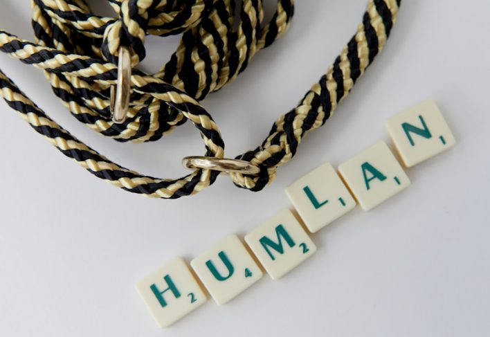 humlan_scrabble_web1