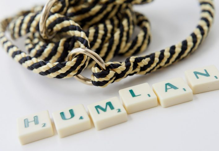 humlan_scrabble_web2
